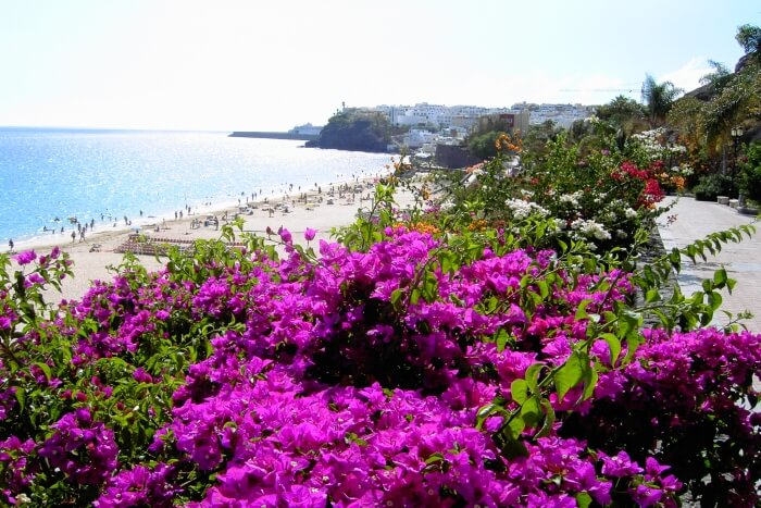 Car Hire Spain To Portugal One Way